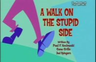 A Walk on the Stupid Side