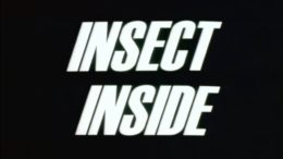 Insect Inside
