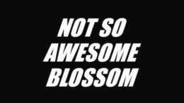 Not So Awesome Blossom